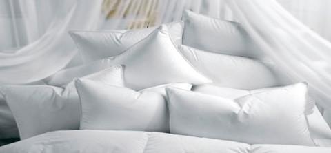 gesund-pillows