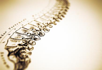 gesund-chiropractic-spine