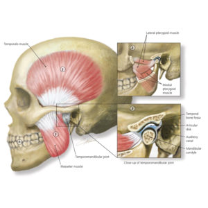 Chiropractic---Jaw-Pain---gesund